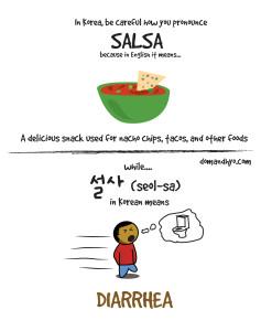 salsa in korea 설사