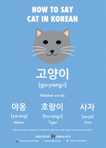 How to Say Cat in Korean