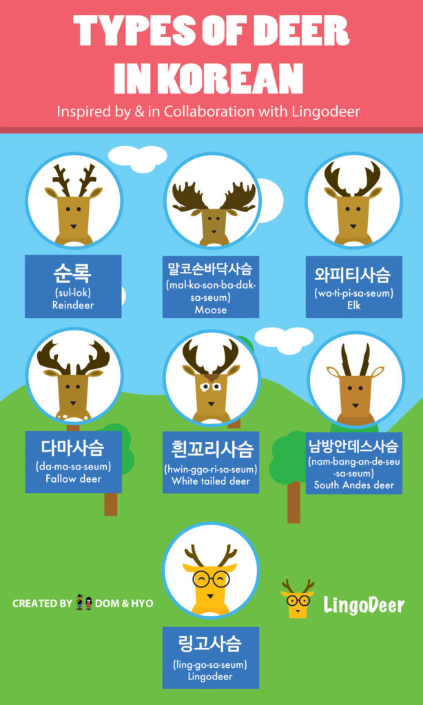 Deer in Korean