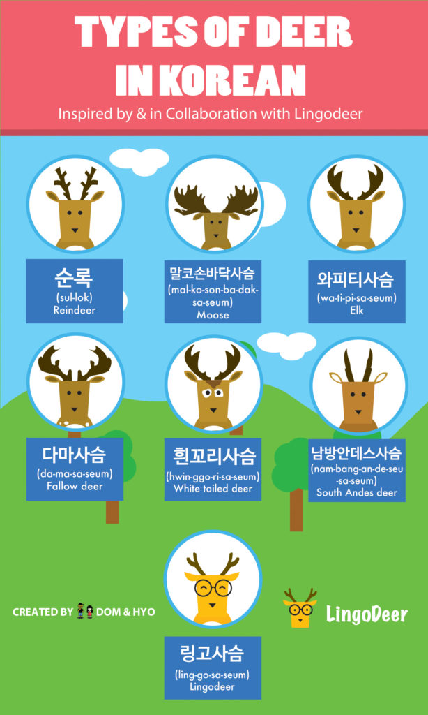Types of Deer in Korean