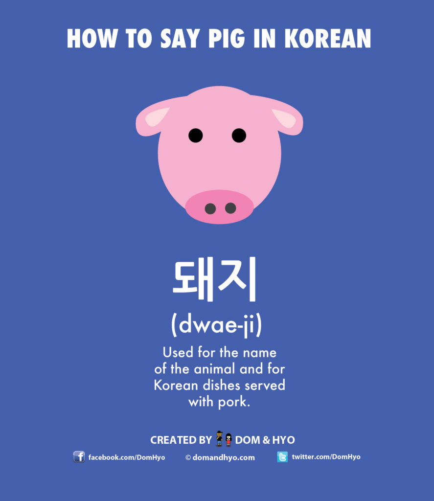 How to Say Pig in Korean