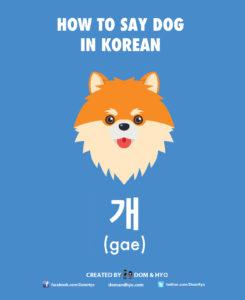 Dog in Korean