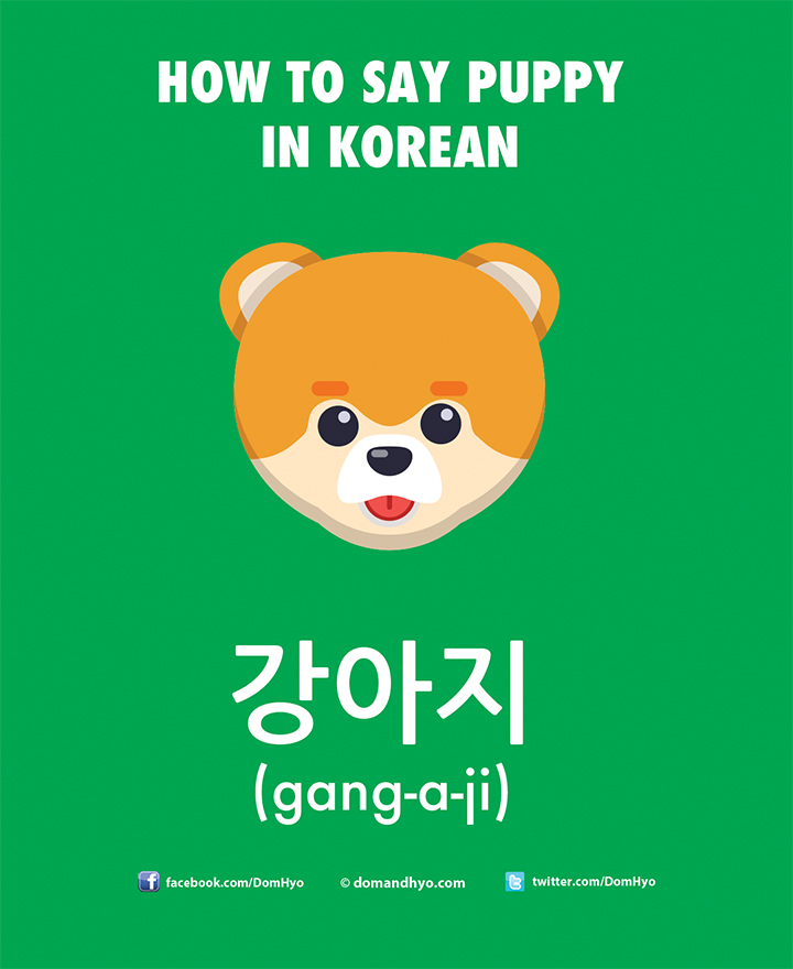 How to Say Puppy in Korean